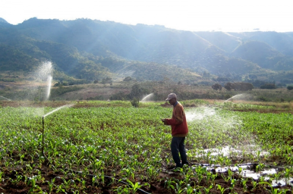 Studying African Farmer-Led Irrigation (SAFI)